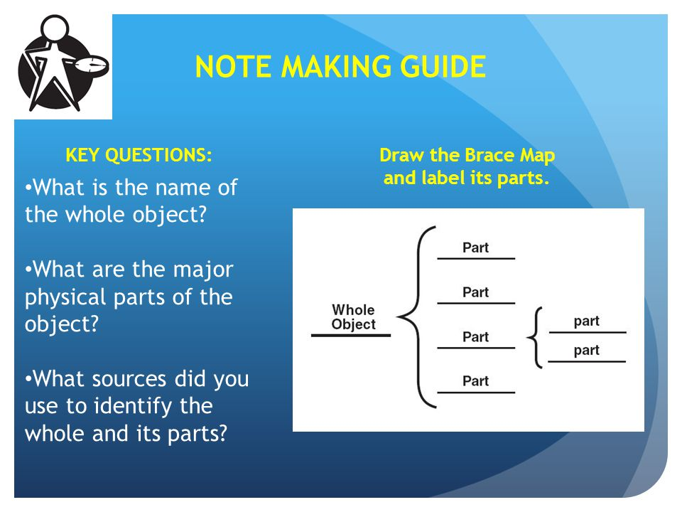 Draw the Brace Map and label its parts.