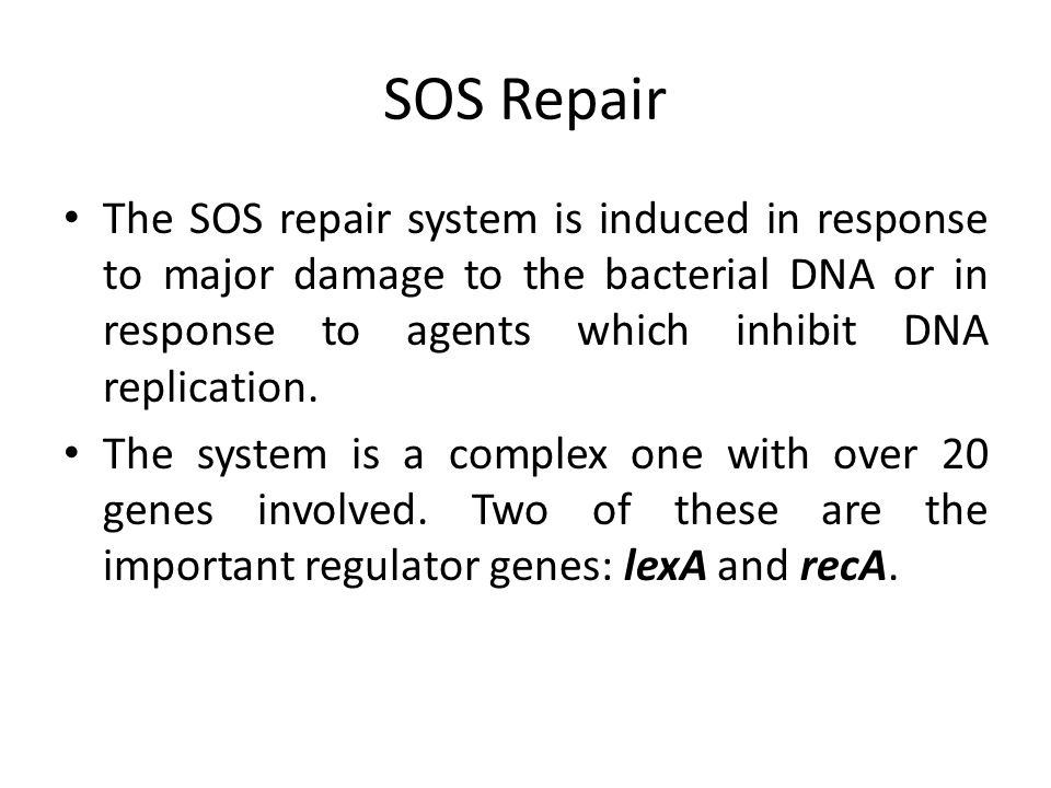 SOS Repair The SOS repair system is induced in response to major damage to the bacterial DNA or in response to agents which inhibit DNA replication.