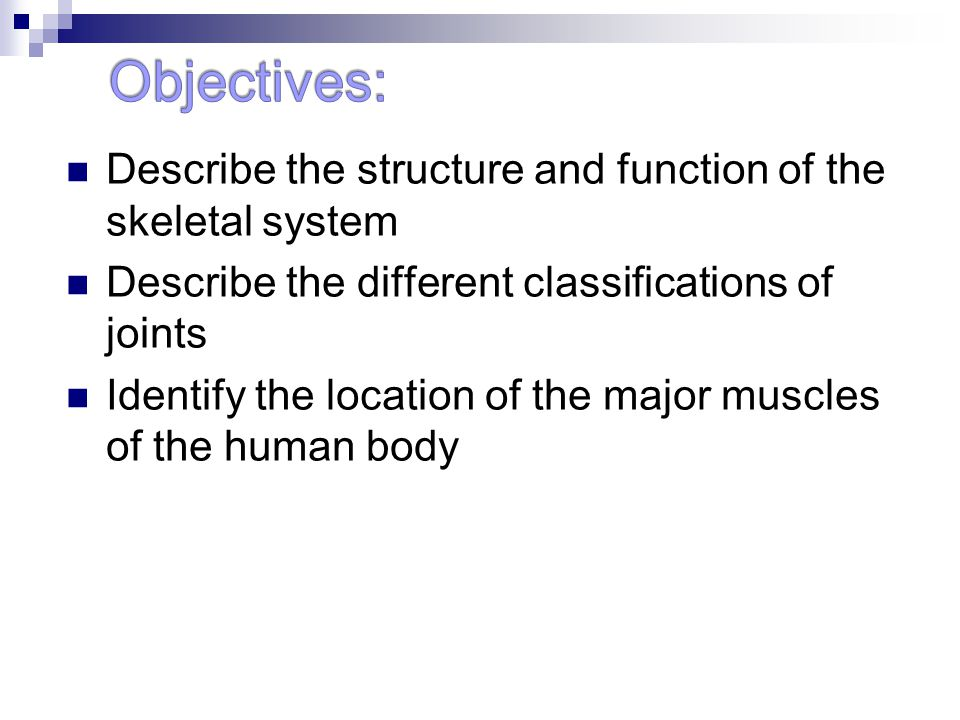 Objectives: Describe the structure and function of the skeletal system