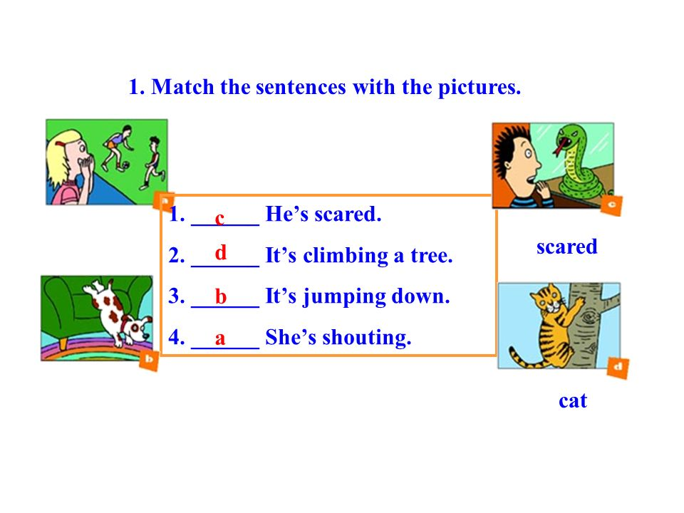 1. Match the sentences with the pictures.