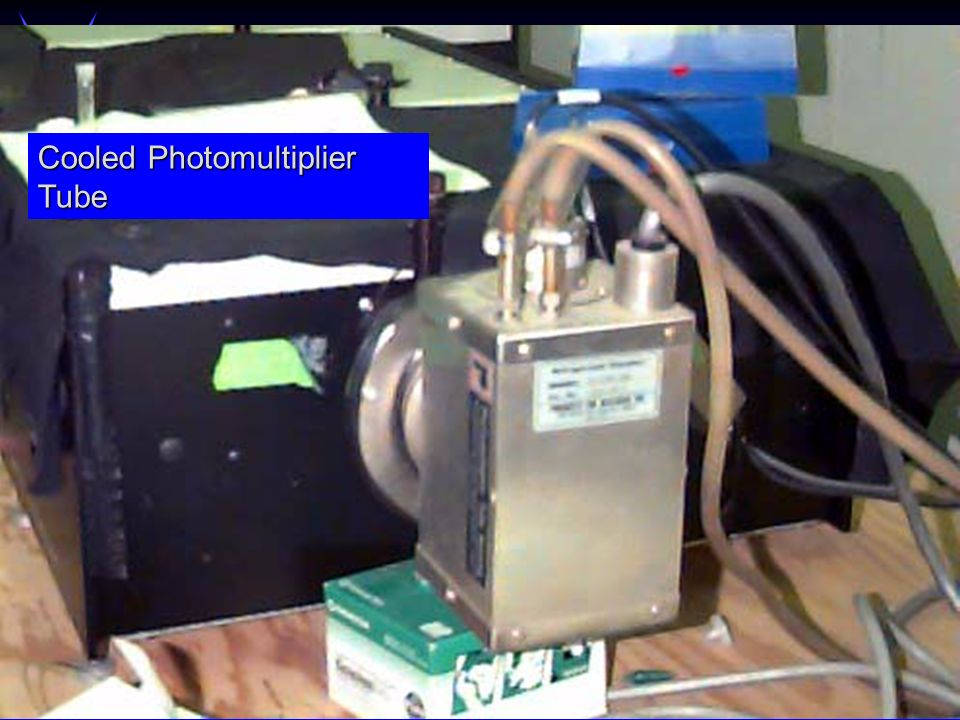 Cooled Photomultiplier