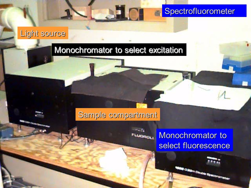 Spectrofluorometer Light source. Monochromator to select excitation. Sample compartment. Monochromator to.