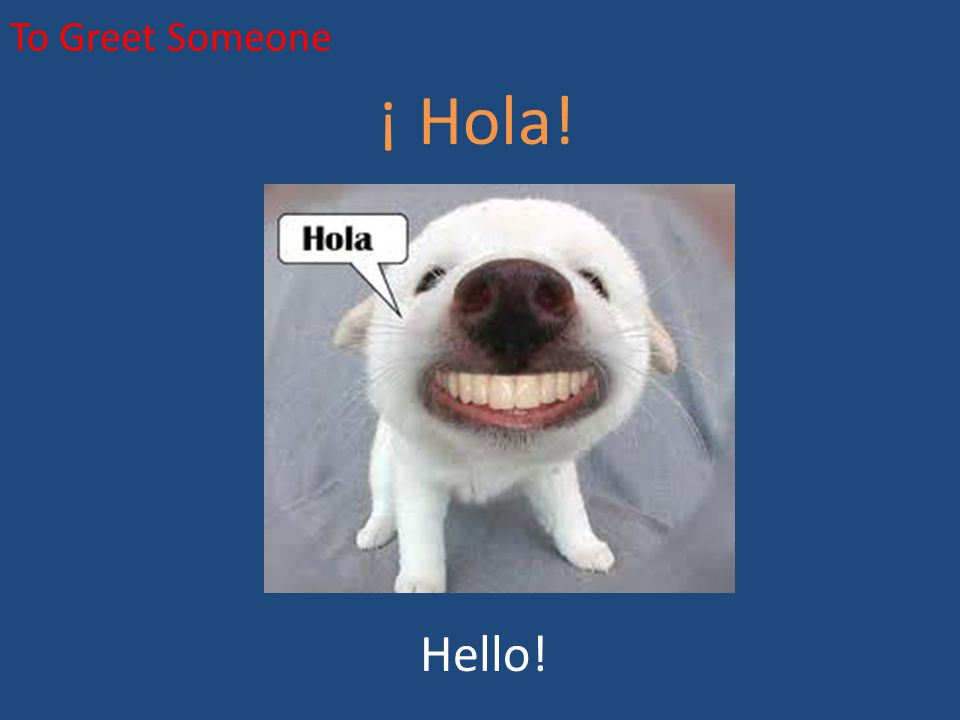 To Greet Someone ¡ Hola! Hello!
