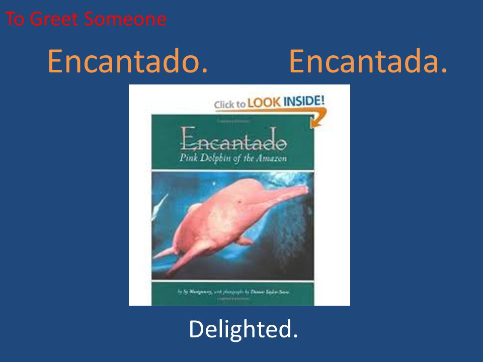 To Greet Someone Encantado. Encantada. Delighted.