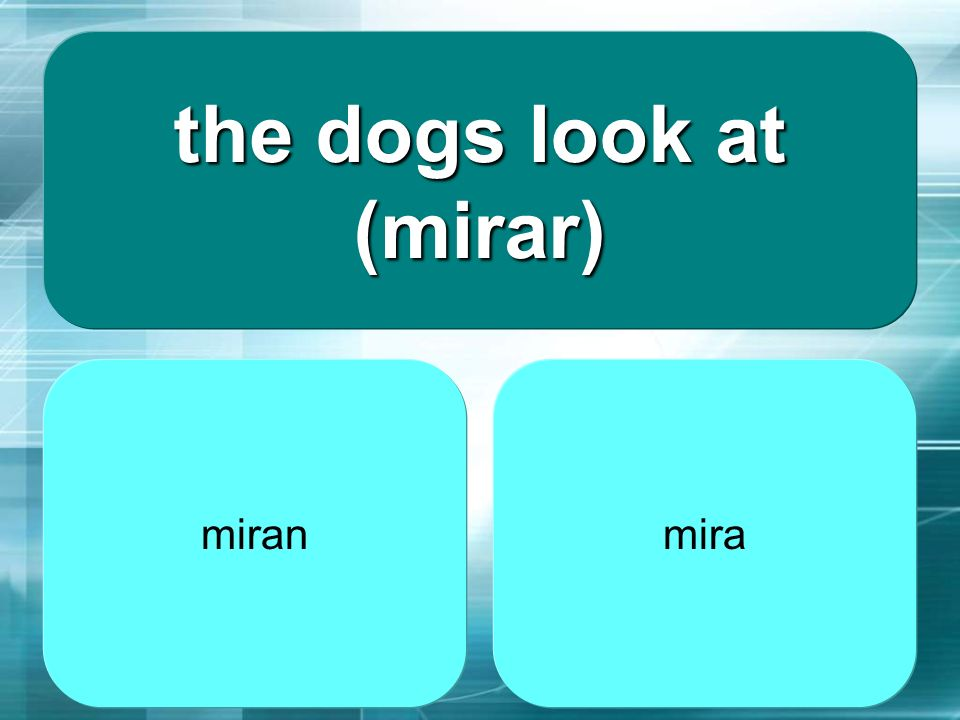 the dogs look at (mirar)