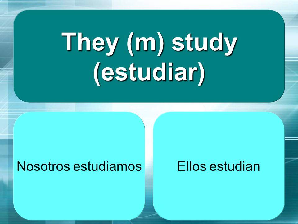 They (m) study (estudiar)