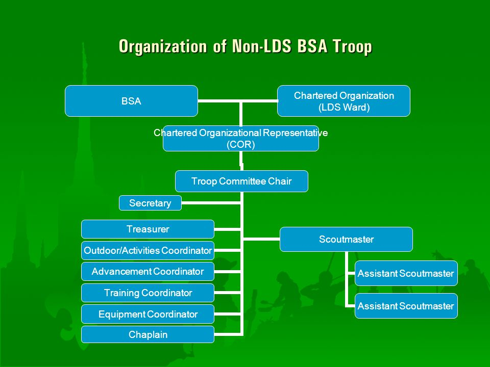 Organization of Non-LDS BSA Troop