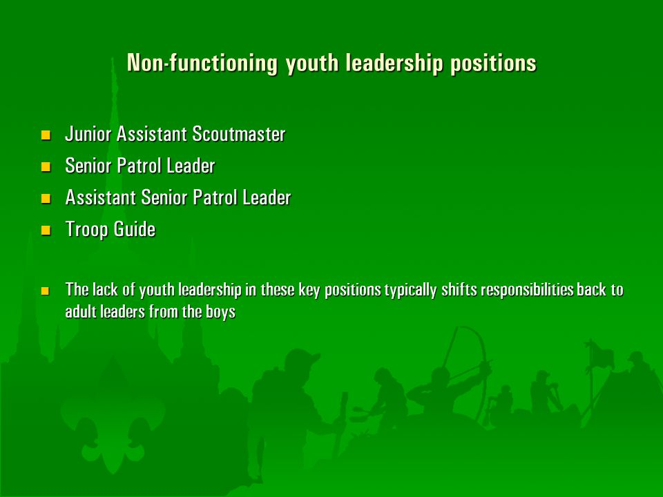 Non-functioning youth leadership positions