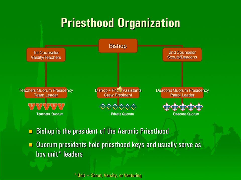Priesthood Organization