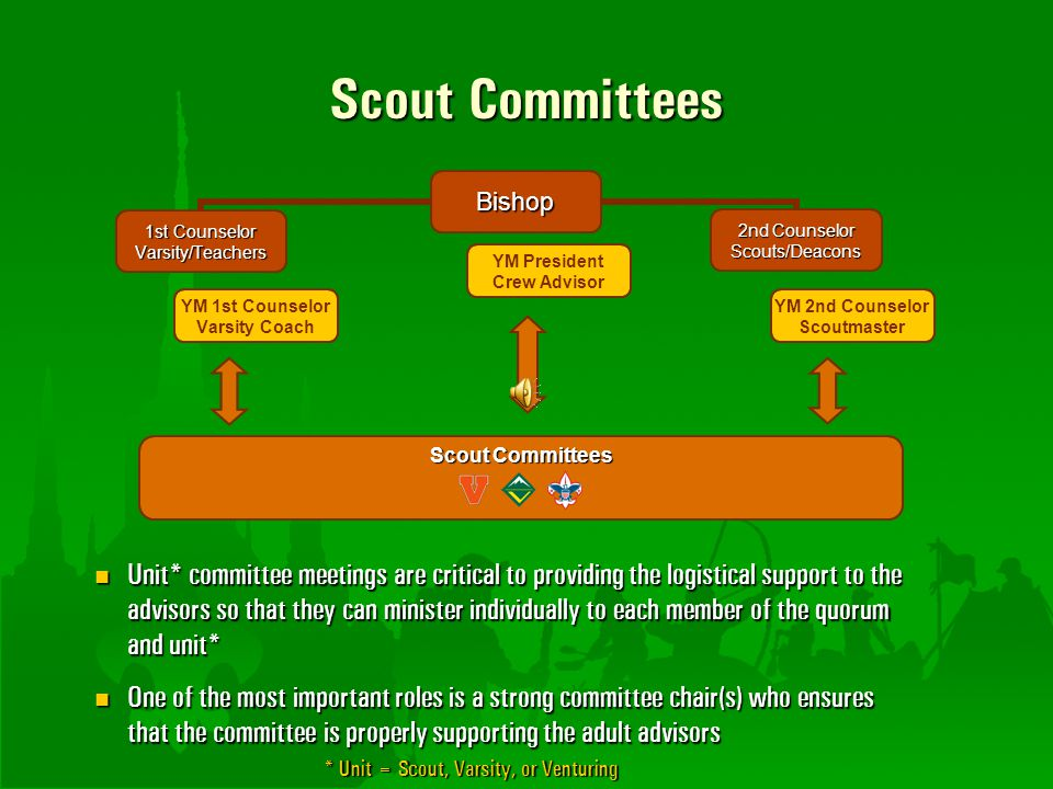 Scout Committees