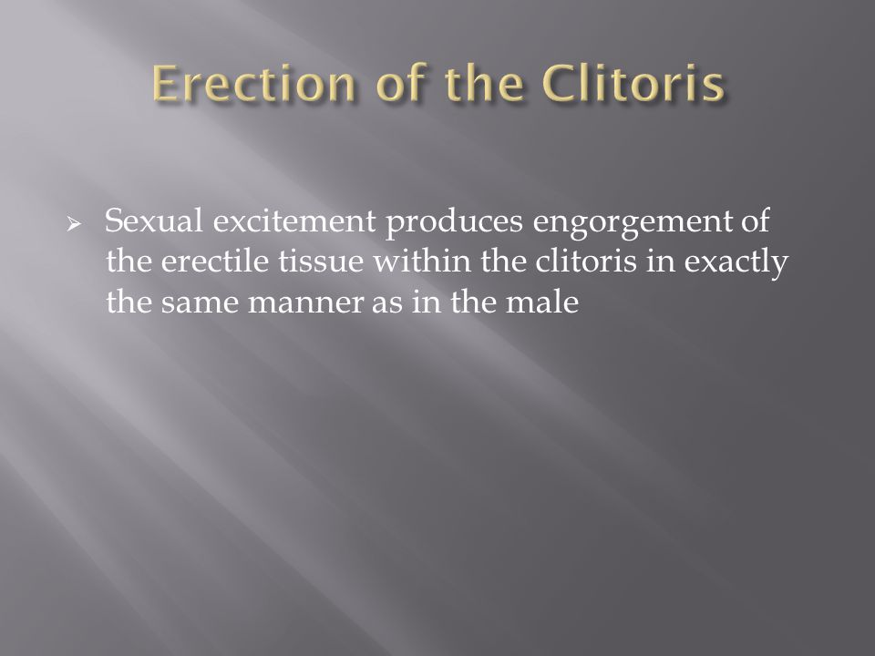 Erection of the Clitoris