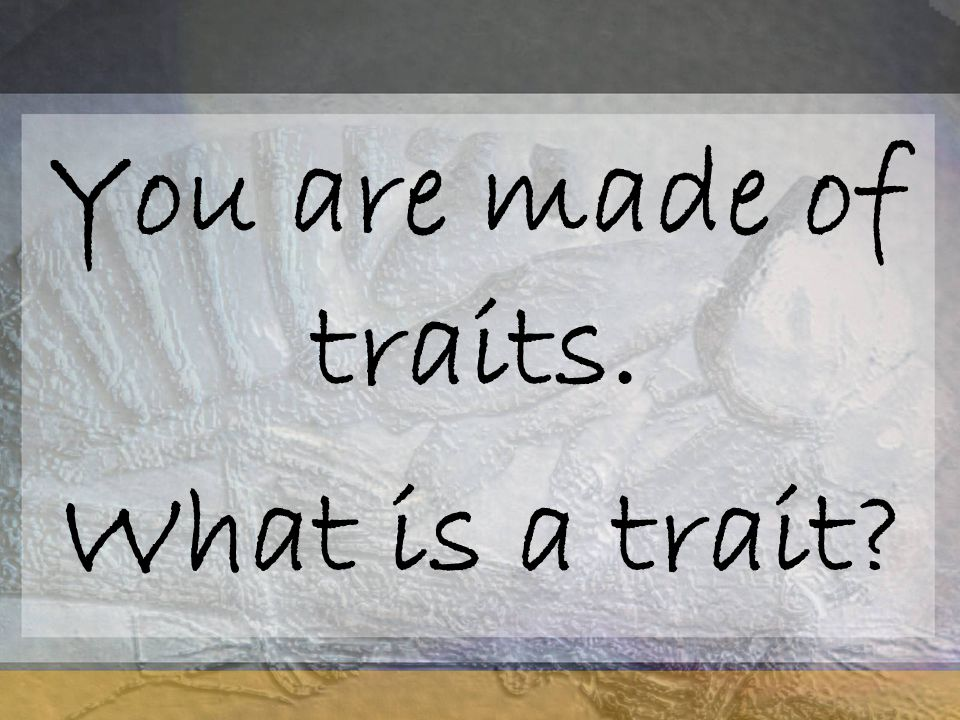 You are made of traits. What is a trait