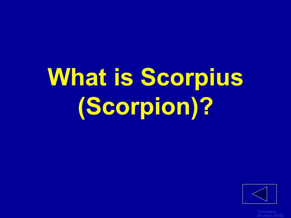 What is Scorpius (Scorpion)