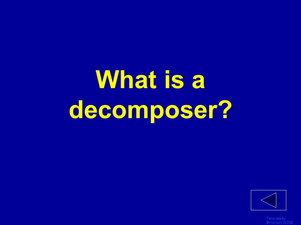 What is a decomposer Template by Bill Arcuri, WCSD