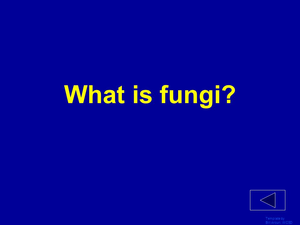 What is fungi Template by Bill Arcuri, WCSD