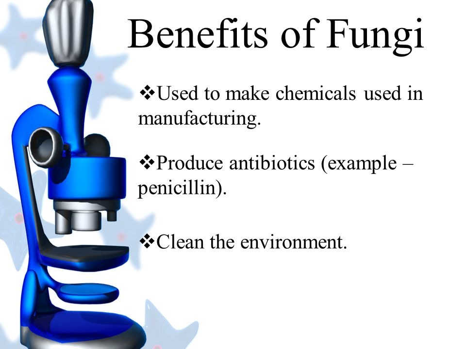 Benefits of Fungi Used to make chemicals used in manufacturing.