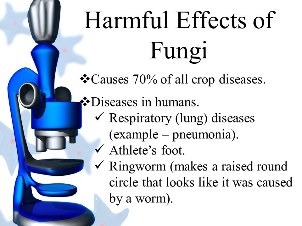 Harmful Effects of Fungi