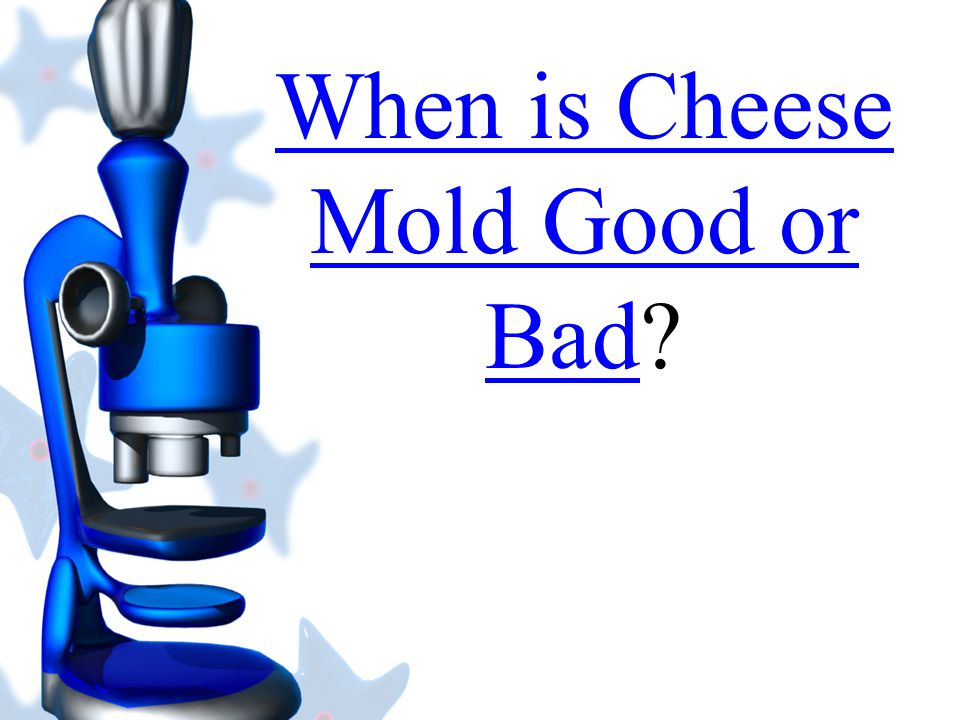 When is Cheese Mold Good or Bad