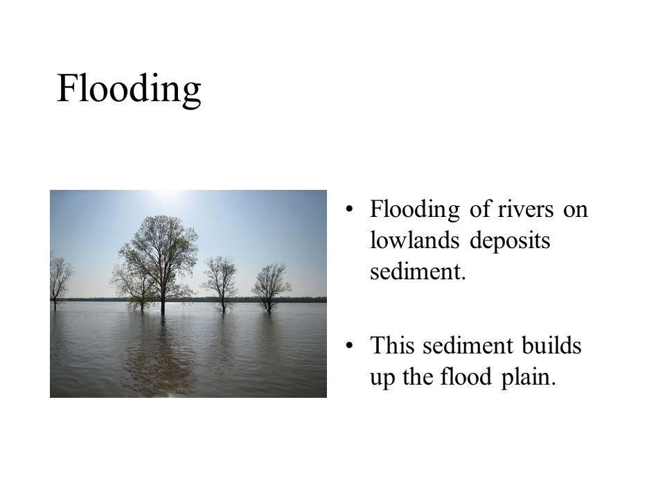 Flooding Flooding of rivers on lowlands deposits sediment.