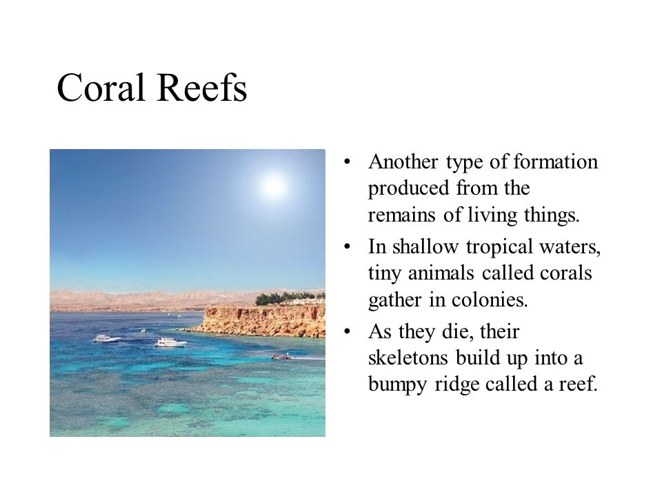 Coral Reefs Another type of formation produced from the remains of living things.