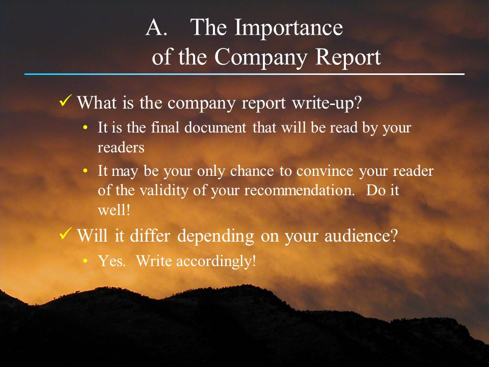 The Importance of the Company Report