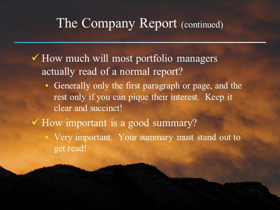 The Company Report (continued)
