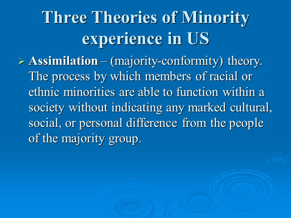Three Theories of Minority experience in US