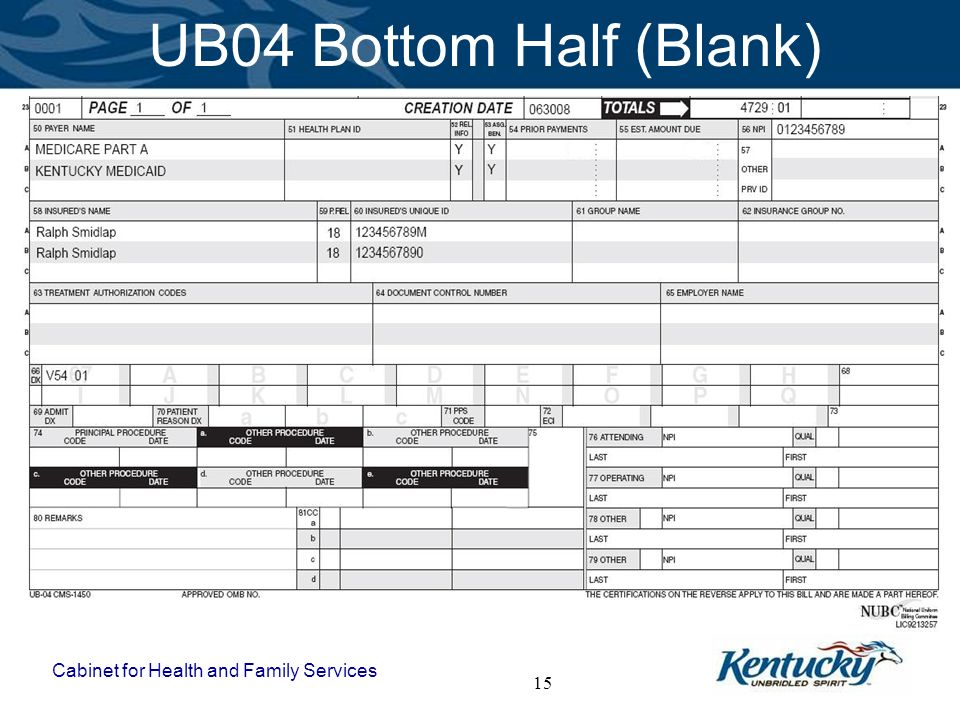 UB04 Bottom Half (Blank)