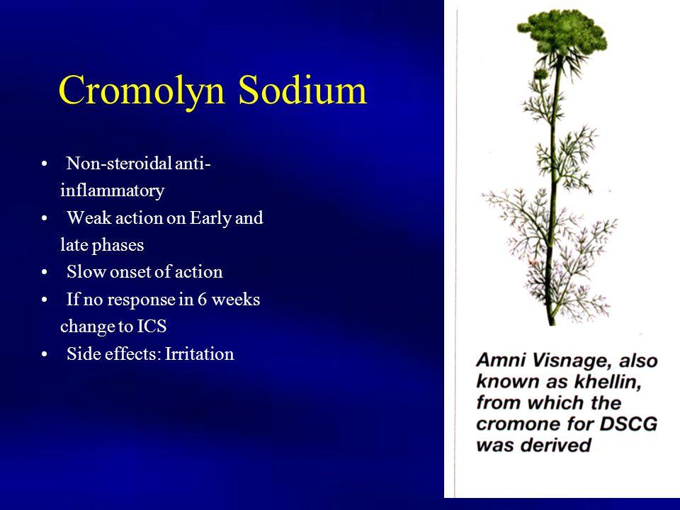Cromolyn Sodium Non-steroidal anti- inflammatory