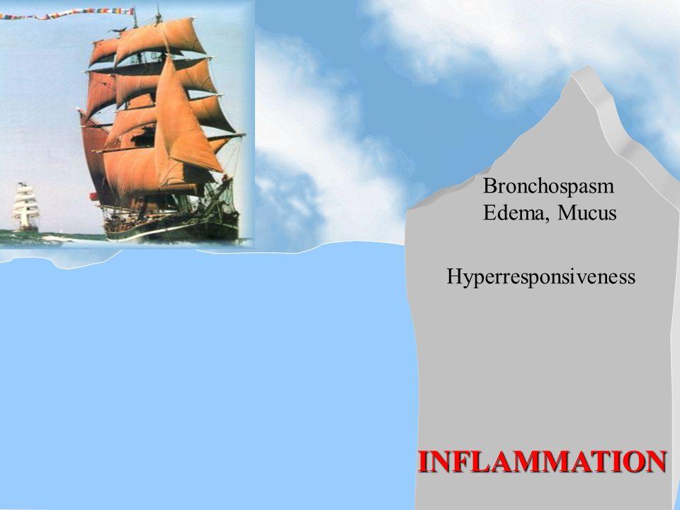 Bronchospasm Edema, Mucus Hyperresponsiveness INFLAMMATION