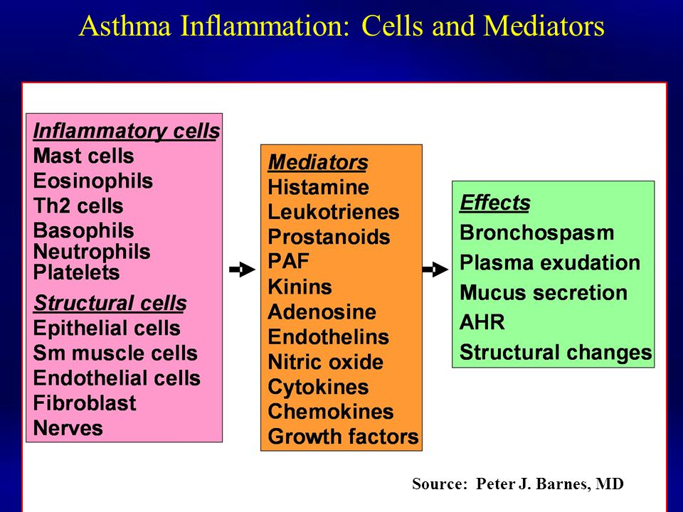 Asthma Inflammation: Cells and Mediators