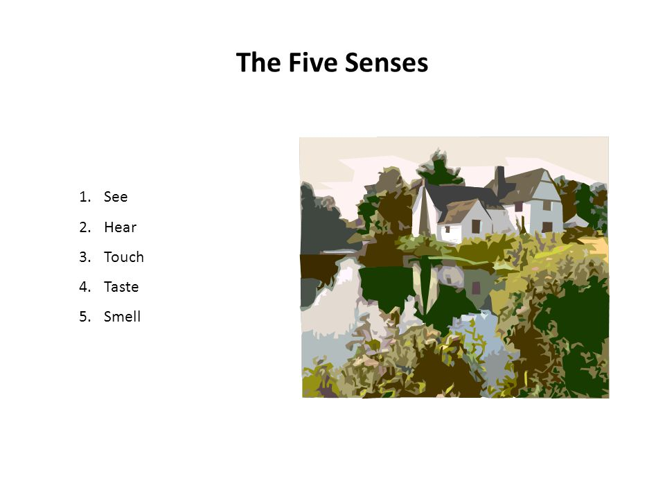 The Five Senses See Hear Touch Taste Smell
