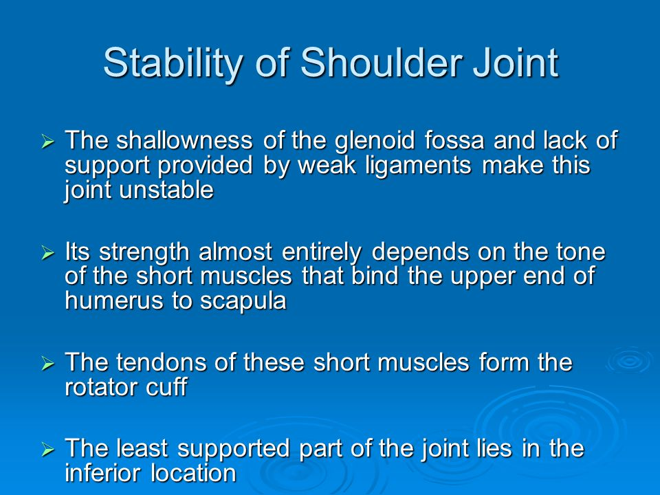 Stability of Shoulder Joint