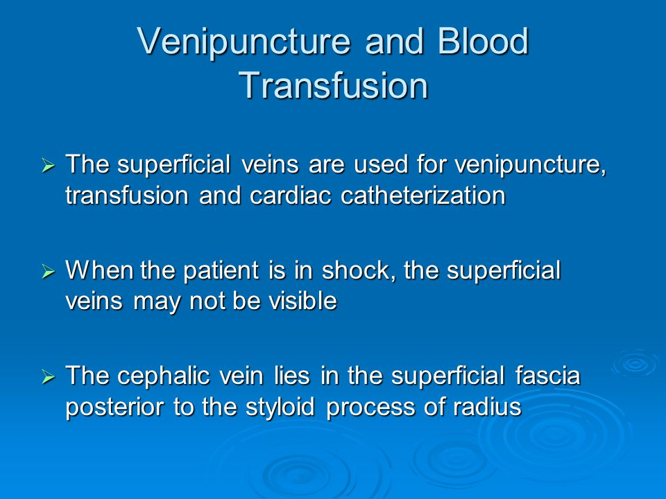 clinical notes on upper limb - ppt download, Cephalic Vein
