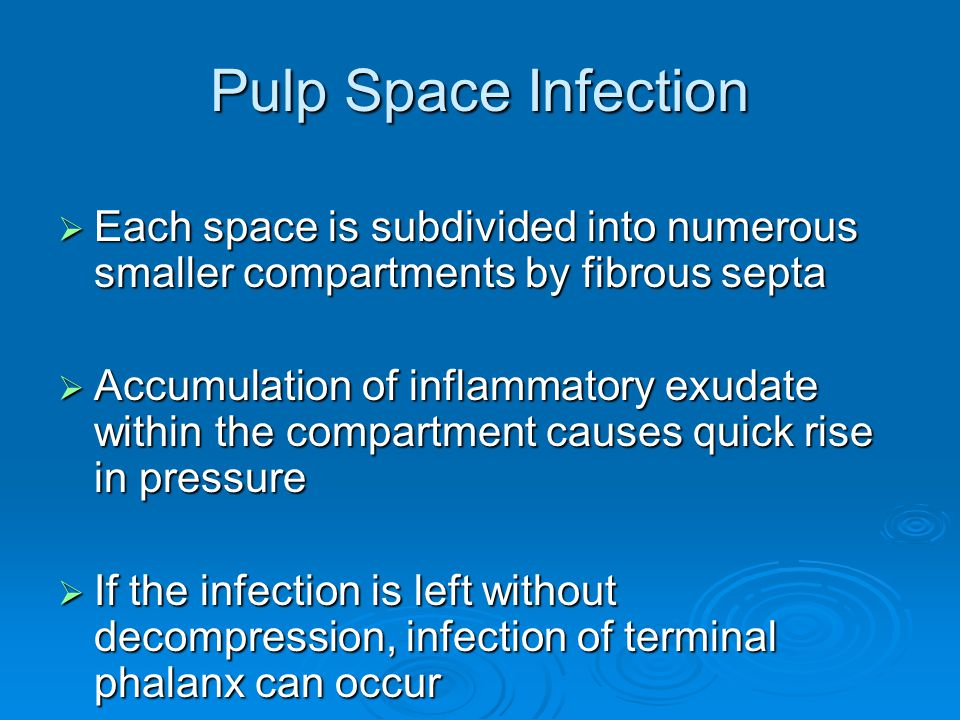 Pulp Space Infection Each space is subdivided into numerous smaller compartments by fibrous septa.