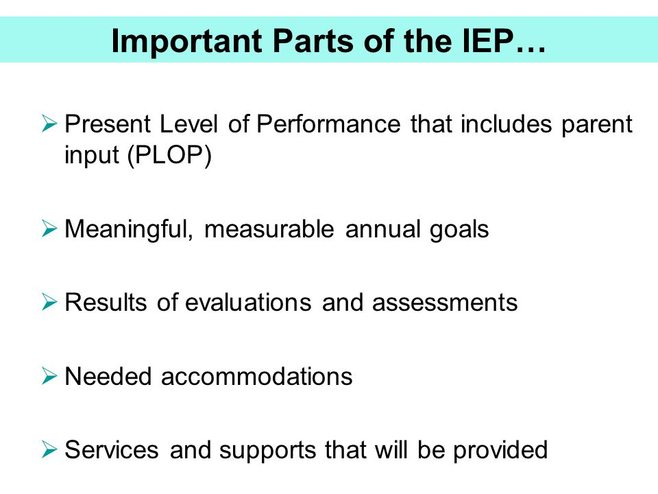 Important Parts of the IEP…