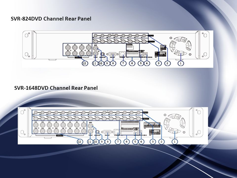 SVR-824DVD Channel Rear Panel