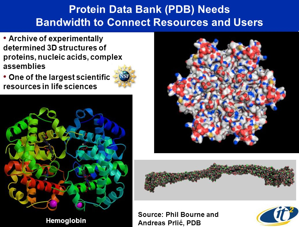 Protein Data Bank (PDB) Needs Bandwidth to Connect Resources and Users