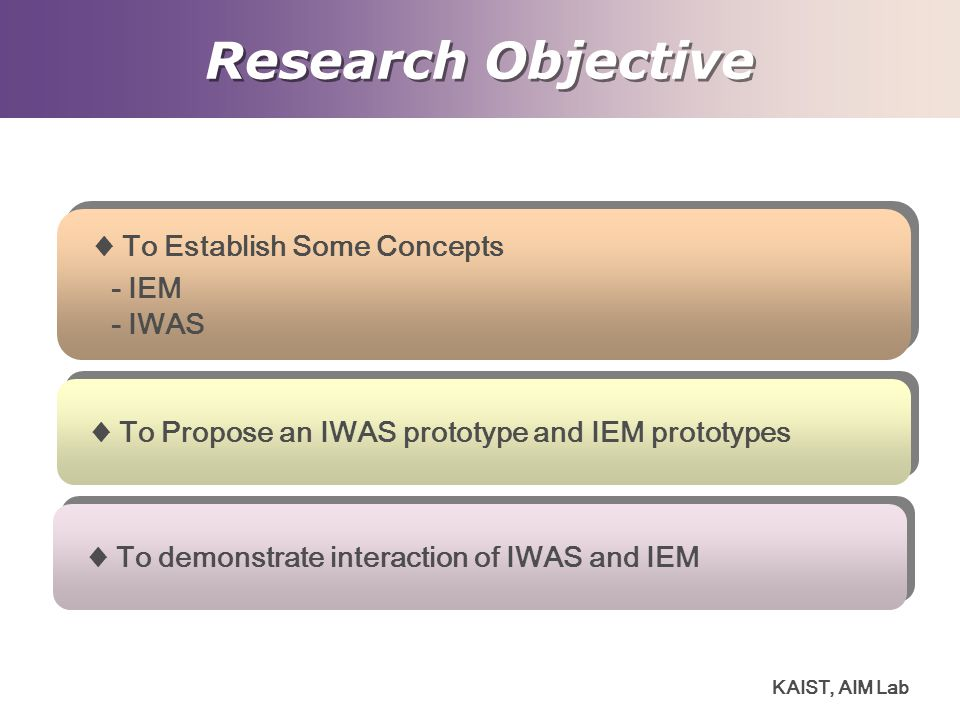 Research Objective ♦ To Establish Some Concepts - IEM - IWAS