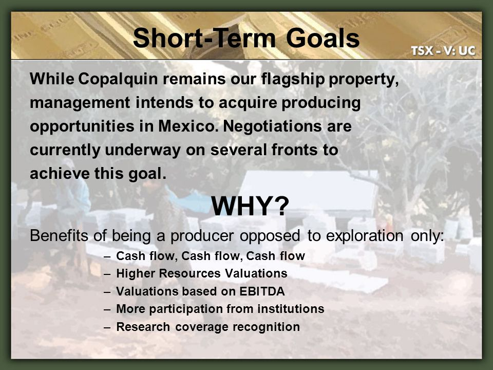 Short-Term Goals WHY While Copalquin remains our flagship property,