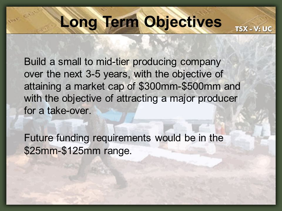 Long Term Objectives Build a small to mid-tier producing company