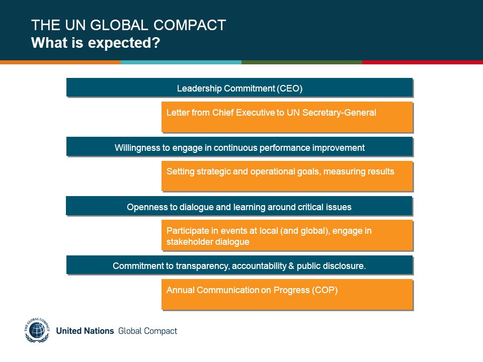 THE UN GLOBAL COMPACT What is expected