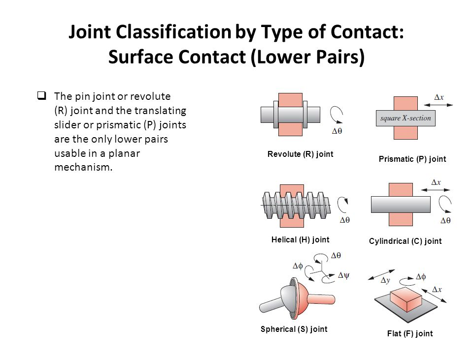 Joint Classification by Type of Contact: Surface Contact (Lower Pairs)