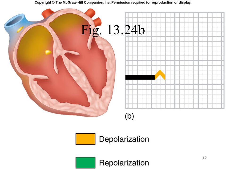 Fig. 13.24b