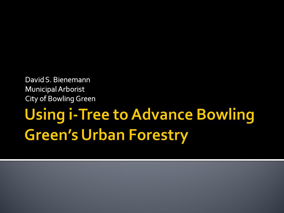 Using i-Tree to Advance Bowling Green's Urban Forestry