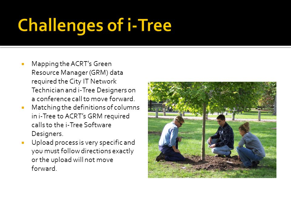 Challenges of i-Tree