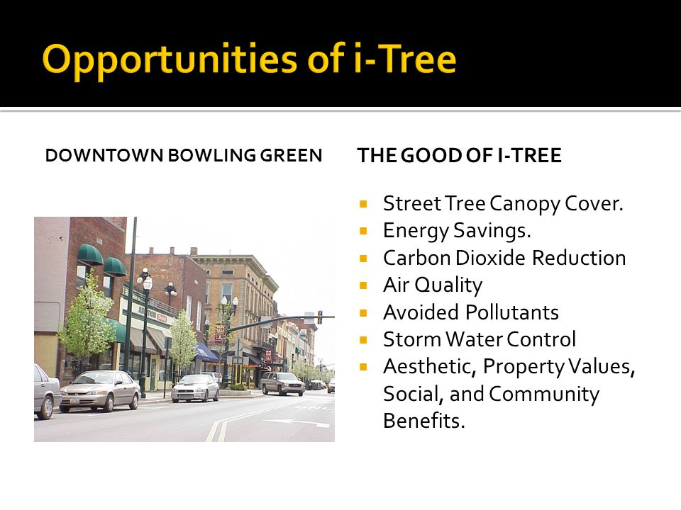 Opportunities of i-Tree