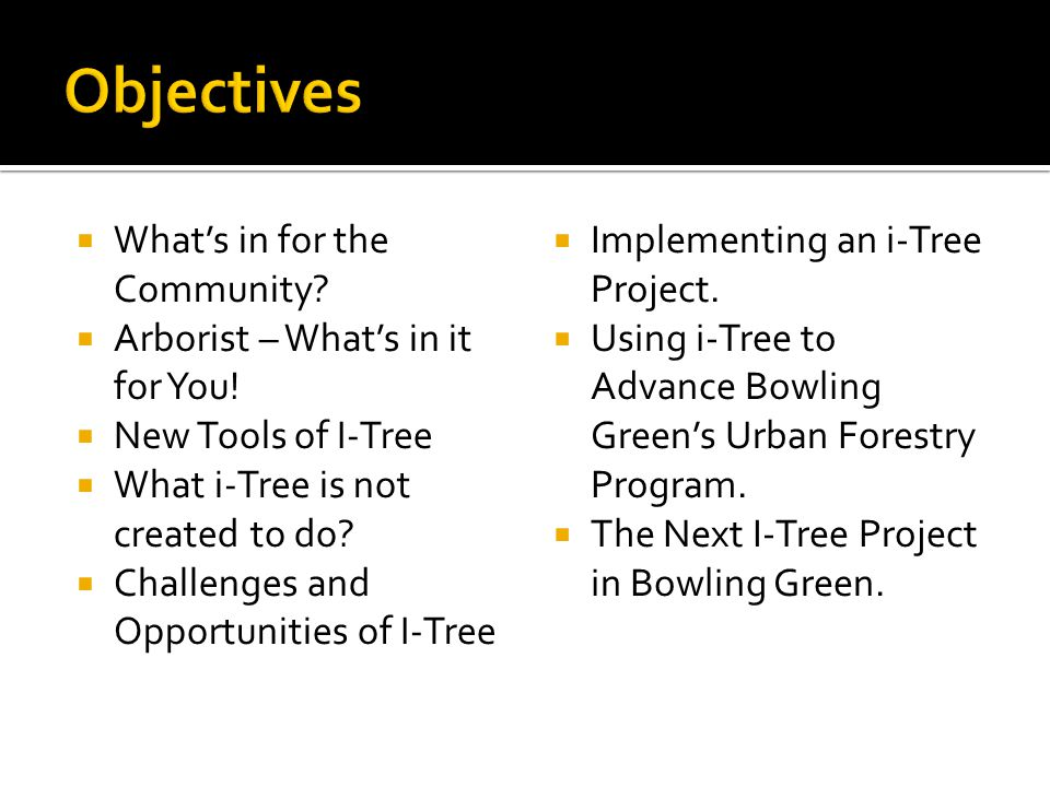 Objectives What's in for the Community