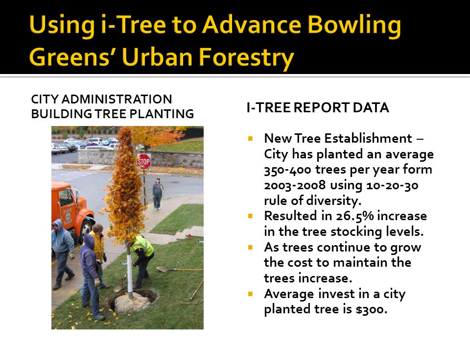 Using i-Tree to Advance Bowling Greens' Urban Forestry
