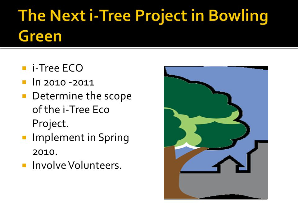 The Next i-Tree Project in Bowling Green
